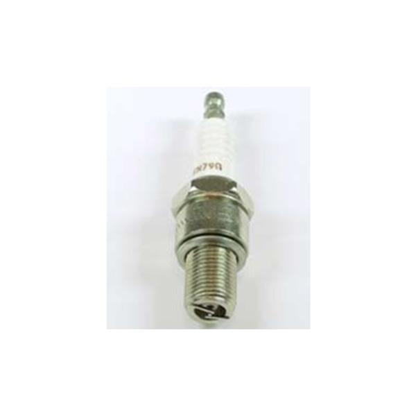 RN79G champion spark plug