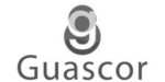 gauscor-1
